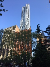 Frank Gehry's luxury residential tower rises Park Row on the east.