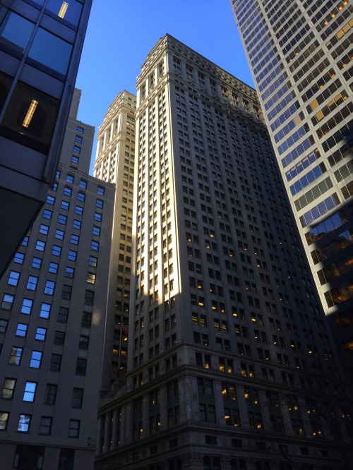 The Equitable Building from Nassau Street. Photo: Theo Mackey Pollack.